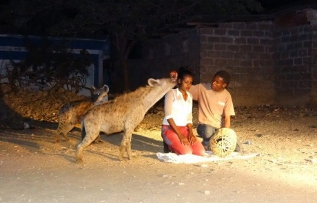Individuele luxe rondreis Ethiopië