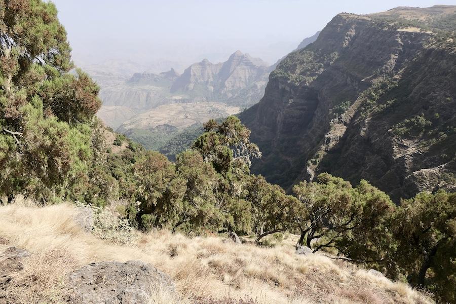Natuurreis Ethiopië