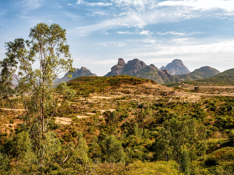 Wandelreis Simien en Bale Mountains
